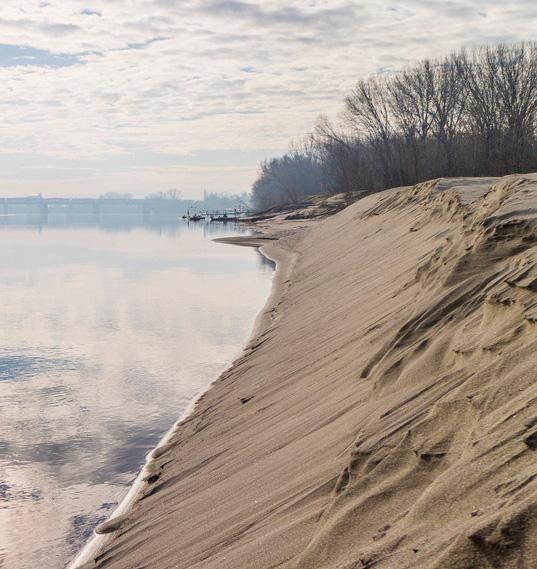 dune di sabbia sul po