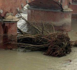 tronchi abbattuti contro ponte - immagine di repertorio