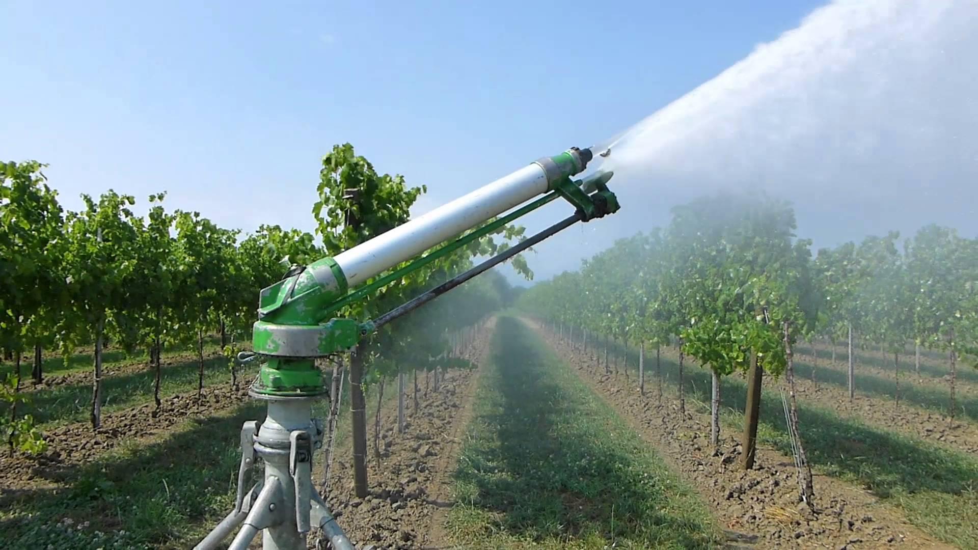 Siccit canali comunque invasati e irrigazioni for Irrigazione per sommersione