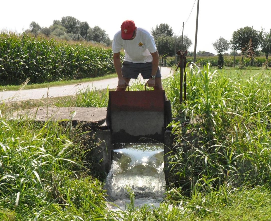 irrigazione prato stabile mantovano (foto G. Arlotti)