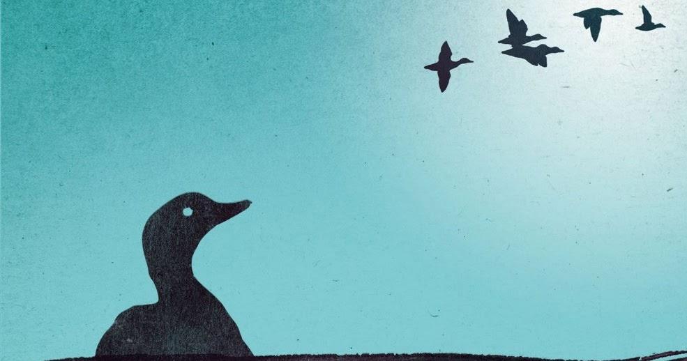 """La copertina del libro """"Le anatre di Holden sanno dove andare"""""""